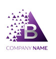 silver letter b logo in the purple pixel triangle vector image