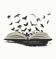 flying birds from open book painted in grunge vector image vector image