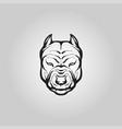 pitbull dog logo icon design vector image vector image