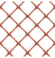 rope knots decorative pattern vector image