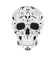 Skull with floral ornament vector image vector image