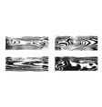 wood texture white black set wooden planks vector image
