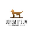 dog and cat logo animal pet care logo design vector image