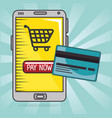 money credit card and smartphone pay now vector image