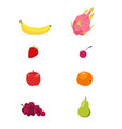 set of flat fruits isolated white background vector image