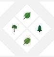 flat icon ecology set of alder evergreen linden vector image vector image