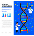 genome sequencing concept small scientists and vector image vector image