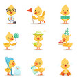 little yellow duck chick different emotions and vector image vector image