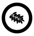 olive branch black icon in circle vector image