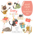 set of cartoon characters cats in love vector image