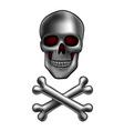 skull with bones vector image vector image