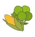 vegetable healthy food vector image vector image