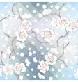 White petals vector image vector image