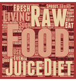b Raw Food Diet b text background wordcloud vector image vector image