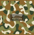 camouflage seamless pattern green brown vector image