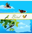 Card with birds flying together and alone bird vector image vector image