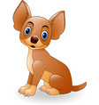 cartoon young dog sitting vector image