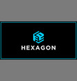 fe hexagon logo design inspiration vector image vector image