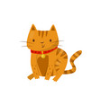 funny cat cute domestic pet animal cartoon vector image vector image