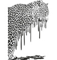 Leopard abstract painting on a white background vector image vector image
