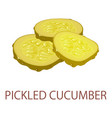 pickled cucumber icon isometric style vector image vector image
