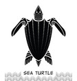 sea turtle icon 03 vector image vector image