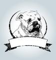 Vintage label with bulldog head vector image vector image