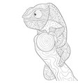 adult coloring bookpage a cute cameleon on a vector image