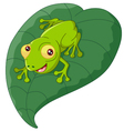 Cartoon frog sitting on a leaf vector image