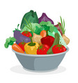 cartoon hand drawn vegetables in metal bowl vector image vector image