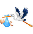 cartoon stork with baby boy vector image