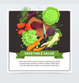 cooking vegetable salad in process vector image