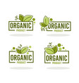 doodle organic leaves emblems elements frames vector image vector image