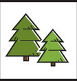 green pine trees vector image