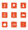 vitamin boom icons set grunge style vector image
