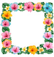 watercolor colorful hibiscus and frangipani vector image