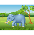 Cartoon African elephant in the jungle vector image vector image