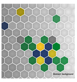 hexagon in Brazil flag concept vector image