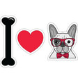I love french bulldog hipster with hipster glasses vector image vector image