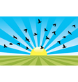 rising sun and flying birds vector image