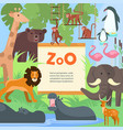 zoo animals poster template vector image vector image