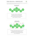 cbd isolate vs terpsolate vertical business vector image vector image
