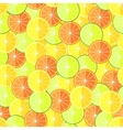 Citrus seamless pattern with lemons oranges and vector image vector image