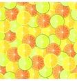 citrus seamless pattern with lemons oranges vector image