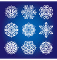 Collection of snowflakes or decorative rosettes vector image vector image