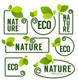 eco and nature green fresh leaves emblems vector image vector image