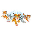 cute brave white and orange tigers running vector image
