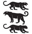 puma vector image