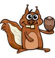 squirrel with nut cartoon vector image