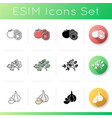 vegetable icons set vector image vector image